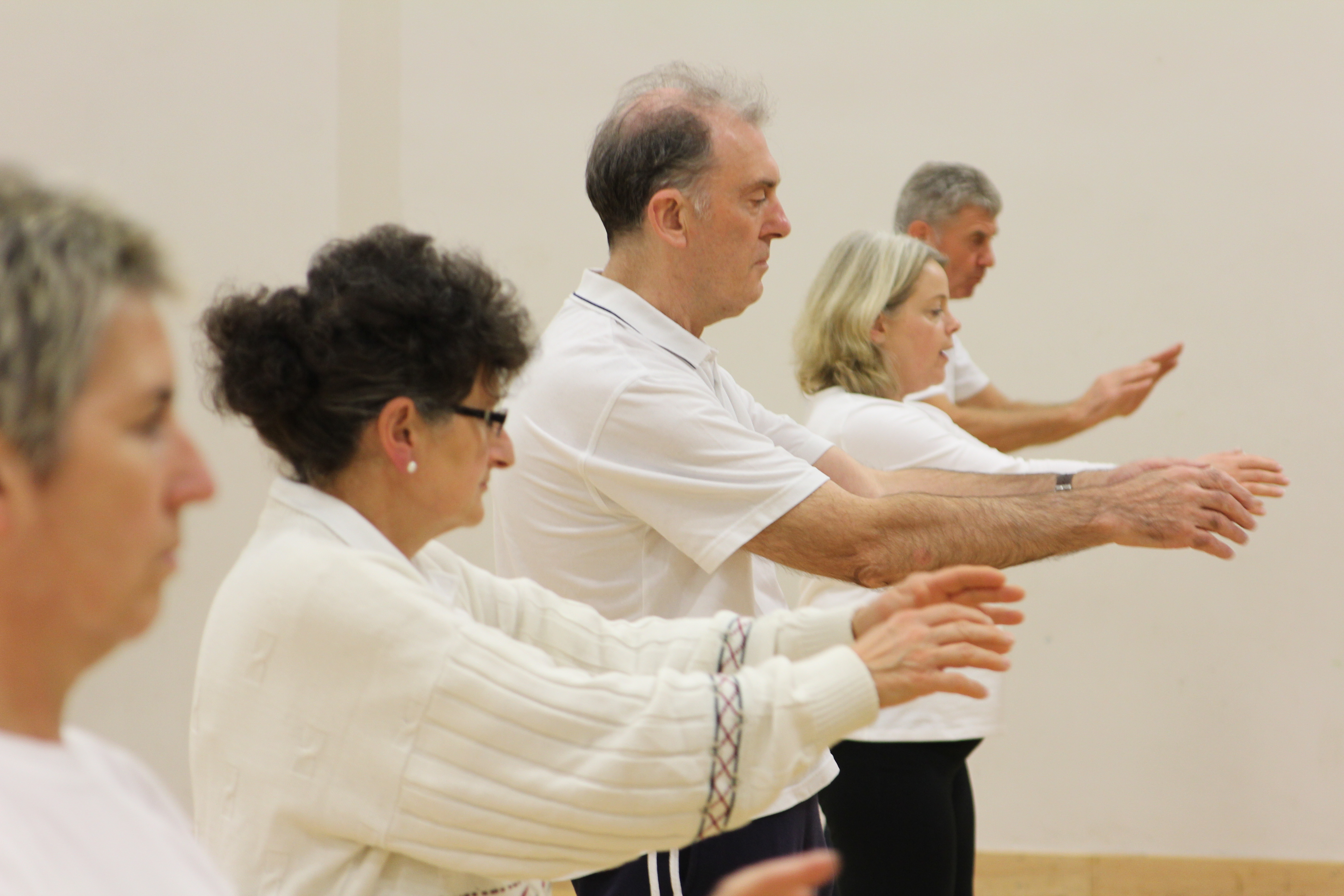 t ai chi Mission: charlottesville t'ai chi center is a non-profit organization dedicated to  teaching and promoting the health benefits and art of t'ai chi ch'uan in the.